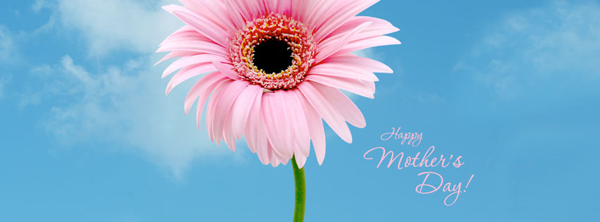 happy-mothers-day-pink-flower
